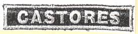 castor5.jpg