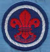 scouts8.jpg