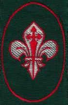 scouts63.jpg