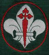 scouts64.jpg