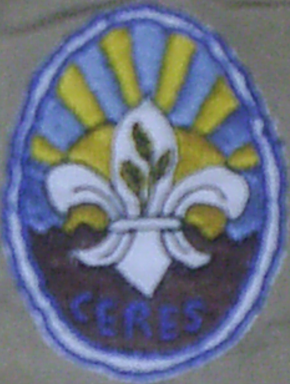 grupo scout ceres - sagrajas badajoz.JPG